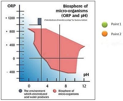 Figure 2. interdependency between the values of pH and ORP and surviving and micro organisms